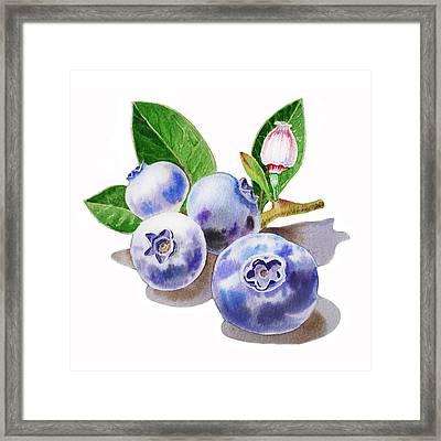 Artz Vitamins The Blueberries Framed Print by Irina Sztukowski