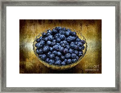 Blueberry Elegance Framed Print by Andee Design