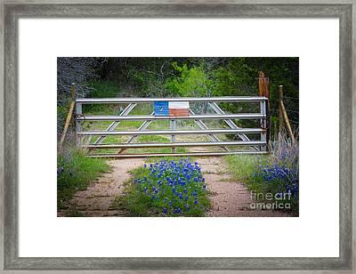 Bluebonnet Gate Framed Print by Inge Johnsson