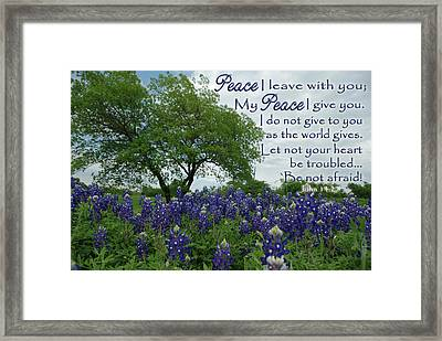 Bluebonnet Peace Framed Print by Robyn Stacey