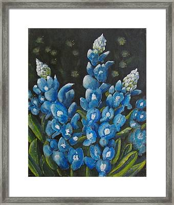 Bluebonnet Framed Print by James Taylor