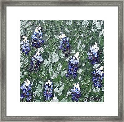 Bluebonnets Framed Print by Melissa Torres