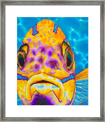 Bluestriped Snapper Framed Print by Daniel Jean-Baptiste