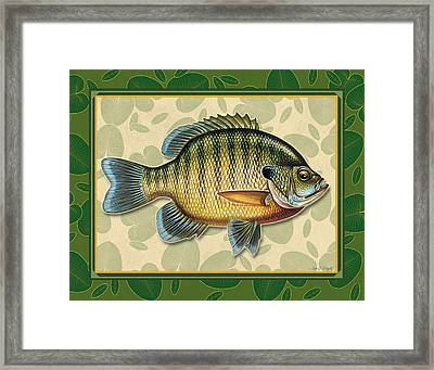 Blugill And Pads Framed Print by JQ Licensing