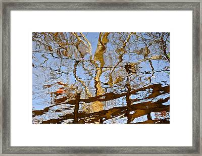 Blurred Reality Framed Print by Frozen in Time Fine Art Photography