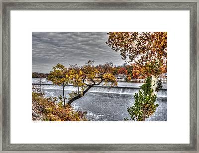 Boathouse Row Through The Foliage Framed Print by Mark Ayzenberg