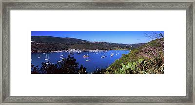 Boats At A Harbor, Porto Azzurro Framed Print by Panoramic Images