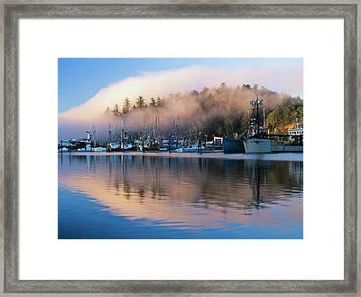 Boats Dock At Winchester Bay  Oregon Framed Print by Robert L. Potts