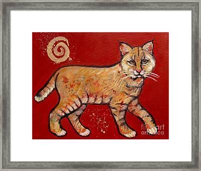 Bobcat Framed Print by Carol Suzanne Niebuhr