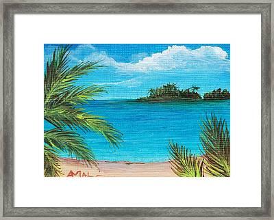 Boca Chica Beach Framed Print by Anastasiya Malakhova