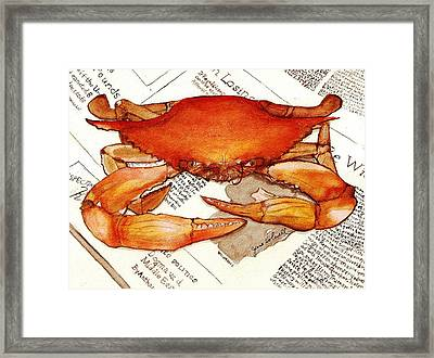 Boiled Crab Framed Print by June Holwell