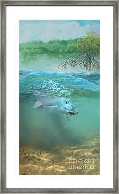 Bone Fish Framed Print by Rob Corsetti