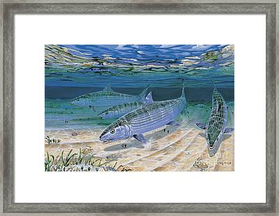 Bonefish Flats In002 Framed Print by Carey Chen