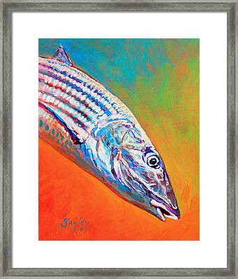 Bonefish Portrait Framed Print by Savlen Art