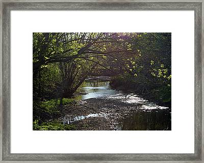 Bonne Femme Creek Framed Print by Cricket Hackmann