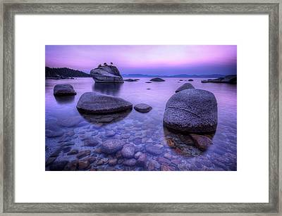 Bonsai Rock Framed Print by Sean Foster