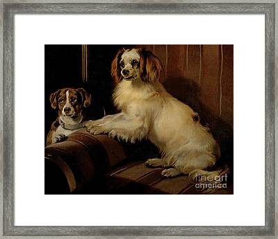 Bony And Var Framed Print by Sir Edwin Landseer