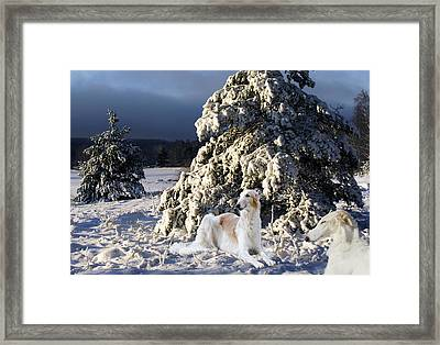 Borzoier Russian Hounds In A Winter Landscape Framed Print by Christian Lagereek