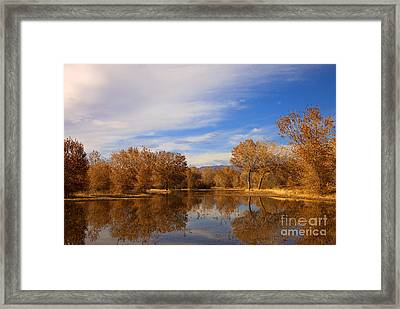Bosque Del Apache Reflections Framed Print by Mike  Dawson