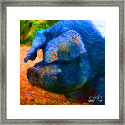 Boss Hog - 2013-0108 - Square Framed Print by Wingsdomain Art and Photography