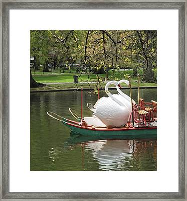 Boston Swan Boats Framed Print by Barbara McDevitt