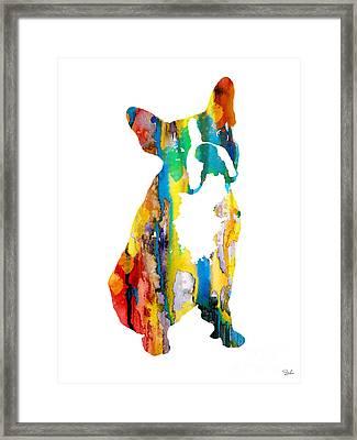 Boston Terrier 3 Framed Print by Luke and Slavi