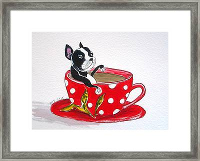 Boston Terrier In A Coffee Cup Framed Print by Rita Drolet