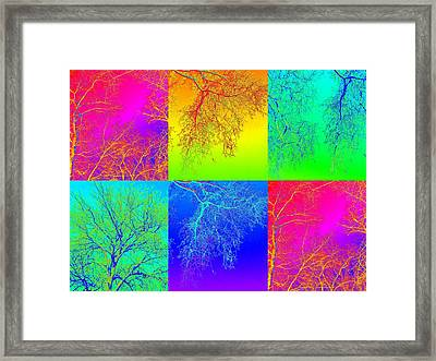 Botanic Gardens Day Out Framed Print by Cathy Jacobs