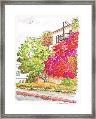 Bougainvilleas And A Green Tree In Hollywood - California Framed Print by Carlos G Groppa
