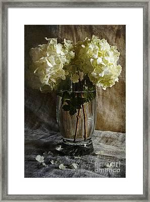 Boule De Neige  Framed Print by Elena Nosyreva