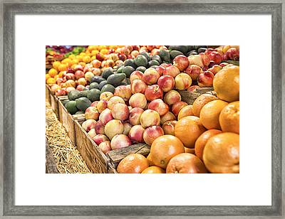 Bounty Framed Print by Caitlyn  Grasso