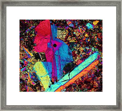 Bounty Hunter Framed Print by Hodges Jeffery