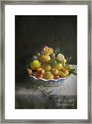 Bounty Pile High Framed Print by Elena Nosyreva
