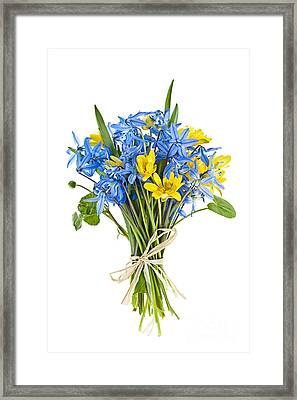 Bouquet Of Fresh Spring Flowers Framed Print by Elena Elisseeva