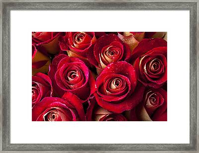 Boutique Roses Framed Print by Garry Gay