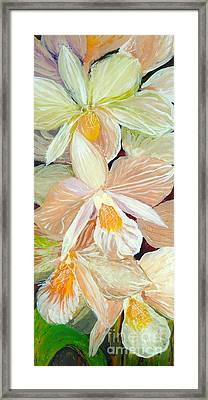 Boxed Orchids Detail Framed Print by Anna Skaradzinska