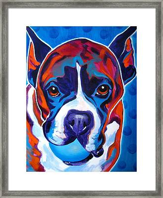 Boxer - Atticus Framed Print by Alicia VanNoy Call