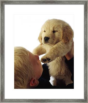 Boy Holding Puppy Up Framed Print by Ron Nickel