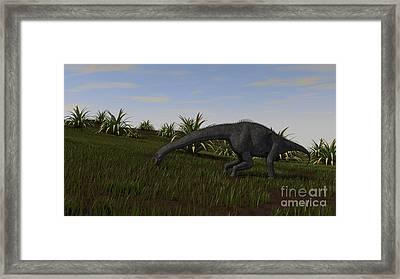 Brachiosaurus Grazing In A Grassy Field Framed Print by Kostyantyn Ivanyshen