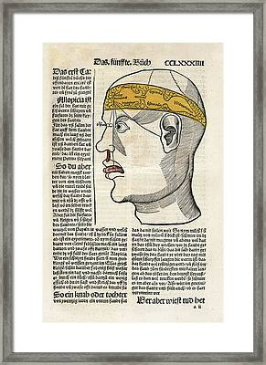 Brain Functions And Senses Framed Print by National Library Of Medicine