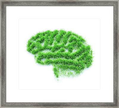Brain Made From Grass Framed Print by Andrzej Wojcicki