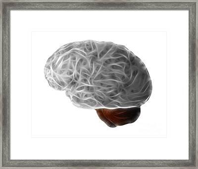 Brain Framed Print by Michal Boubin