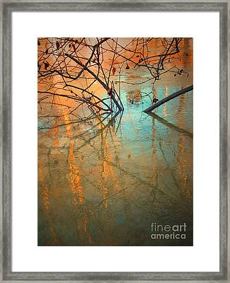 Branches And Ice Framed Print by Tara Turner