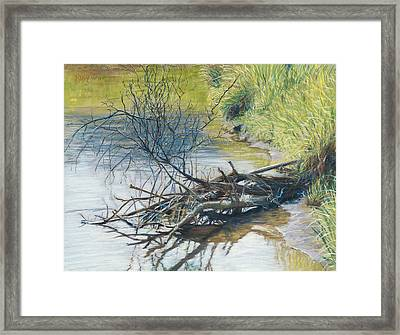 Branches By A River Bank Framed Print by Nick Payne