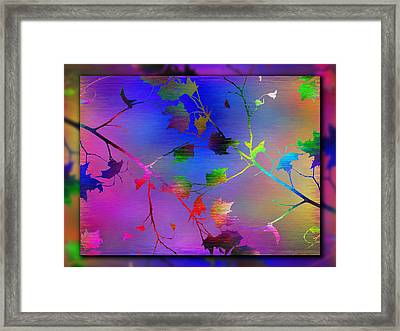 Branches In The Mist 12 Framed Print by Tim Allen