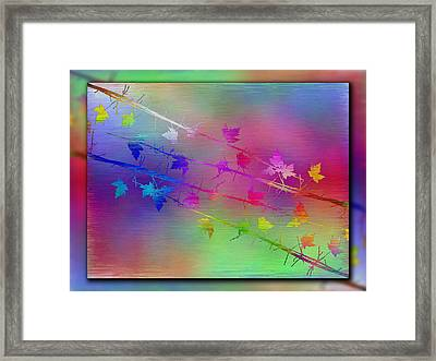 Branches In The Mist 17 Framed Print by Tim Allen