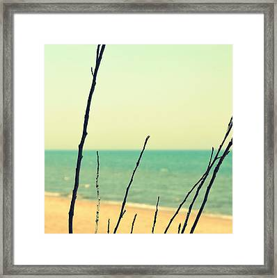 Branches On The Beach Framed Print by Michelle Calkins