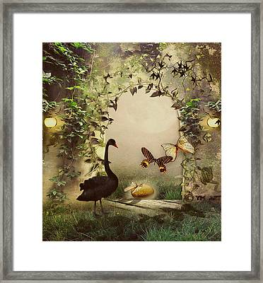 Brand New Day Framed Print by Yvon van der Wijk