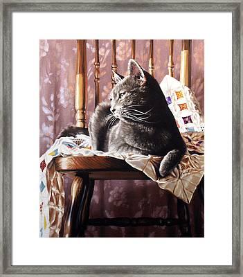 Brat Cat Framed Print by Dianna Ponting