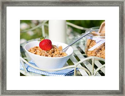 Breakfast Al Fresco Framed Print by Amanda Elwell
